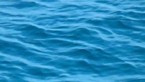 Superficie dell'acqua di mare con l'ondulazione e le onde archivi video