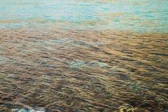 Superficie dell'acqua nel lago Fotografie Stock