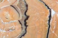Superficie della lastra della pietra dell'onyx di Brown Fotografia Stock Libera da Diritti