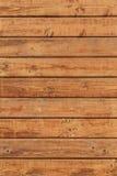 Superficie della parete della capanna delle plance di White Pine - dettaglio Fotografia Stock Libera da Diritti