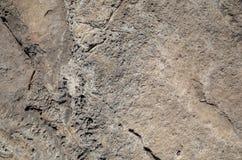 Superficie della roccia Fotografia Stock Libera da Diritti