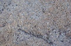 Superficie della roccia Fotografia Stock