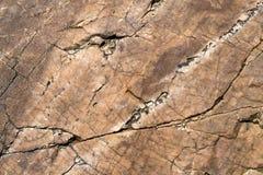 Superficie della scogliera della roccia, strutturati di pietra, Fotografia Stock Libera da Diritti