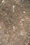 Superficie della sporcizia con le piccole pietre Immagini Stock