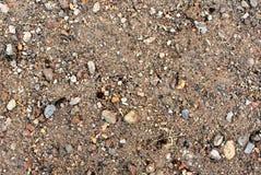 Superficie della sporcizia con le piccole pietre 18 Fotografia Stock