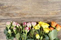 Superficie di legno con le rose variopinte Fotografia Stock Libera da Diritti
