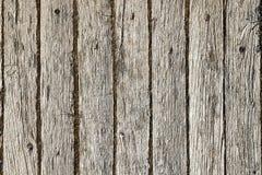 Superficie di legno del legname fotografie stock libere da diritti