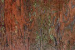 Superficie di legno verniciata Fotografia Stock