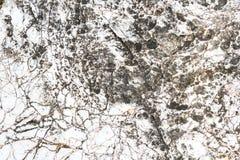Superficie di marmo Fotografie Stock Libere da Diritti