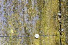 Superficie di metallo giallo graffiata ed arrugginita Immagine Stock