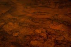 Superficie di mogano lubrificata di legno con il modello naturale fotografia stock libera da diritti