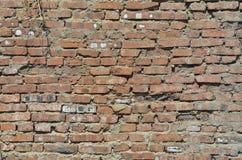 Superficie di muratura 5 Immagini Stock Libere da Diritti