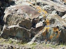 Superficie di pietra con il lichene, luce soleggiata luminosa Fotografia Stock Libera da Diritti