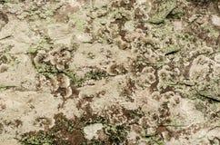 Superficie di pietra in natura Immagini Stock
