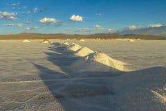 Superficie di Salt Lake fotografie stock libere da diritti