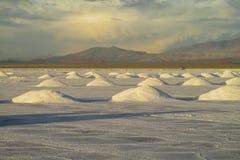 Superficie di Salt Lake fotografia stock