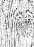 Superficie di struttura di legno con il modello naturale Legno della plancia di lerciume Fotografia Stock