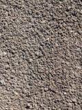 Superficie di suolo allentato con i semi dell'erba Fotografia Stock