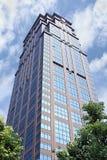 Superficie di un grattacielo moderno a Shanghai, Cina Immagine Stock Libera da Diritti