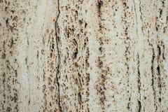 Superficie di vecchia pietra leggera Priorità bassa di marmo bianca Immagine Stock Libera da Diritti