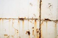 Superficie dipinta bianco d'arrugginimento della lamina di metallo Fotografie Stock
