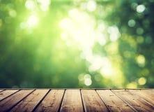 Superficie e foresta di legno Immagini Stock
