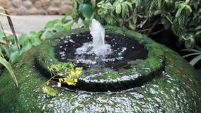 Superficie gigante delle alghe verdi della fontana del barattolo dell'acqua archivi video