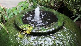 Superficie gigante delle alghe verdi della fontana del barattolo dell'acqua stock footage