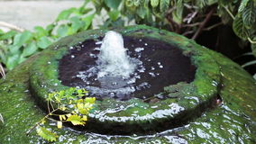Superficie gigante delle alghe verdi della fontana del barattolo dell'acqua video d archivio