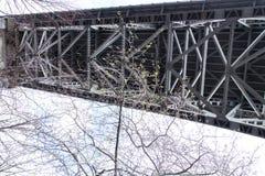 Superficie inferior de Aurora Bridge - Seattle Imagen de archivo