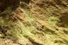 Superficie múltiple de una roca en bosque Fotografía de archivo libre de regalías