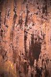 Superficie oxidada para el uso del fondo Fotografía de archivo libre de regalías