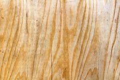 Superficie rasguñada de una hoja de la madera contrachapada del abedul Textura de madera natural abstraiga el fondo Imágenes de archivo libres de regalías