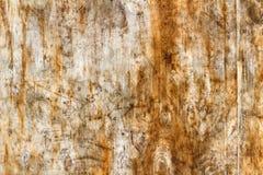 Superficie rasguñada y sucia de una hoja de la madera contrachapada del abedul Textura de madera natural abstraiga el fondo Fotos de archivo libres de regalías