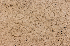 Superficie secca e incrinata di messa a terra Immagini Stock