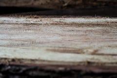 Superficie strutturata di legno Fotografia Stock Libera da Diritti