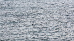 Superficie ventosa del mare con le piccole onde stock footage