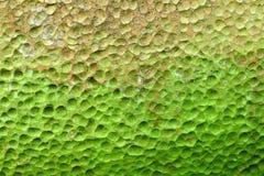 Superficie verde del pozzo del lichene Immagini Stock Libere da Diritti