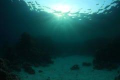 Superficie y arrecife de coral del agua Foto de archivo