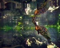 Superficies de la tortuga a respirar Imagenes de archivo