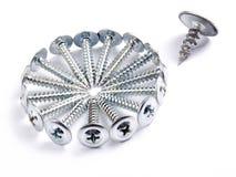 Superfluous screw. Stock Images
