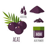 Superfood acai berry set in flat style. Superfood acai berry set in flat style: acai berries, powder, pills, oil. Organic healthy food. Isolated objects on royalty free illustration