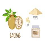Superfood-Baobab eingestellt in flache Art Stockbild