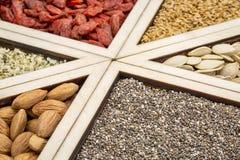 Superfood-Behälterzusammenfassung stockfoto