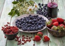Superfood: blåbär frö för blåbärfruktsaftgoji Fotografering för Bildbyråer