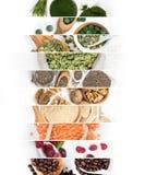 Superfood blandningskivor Fotografering för Bildbyråer