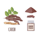 Superfood carob set in flat style. Stock Images