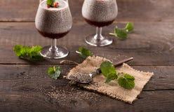 Superfood - chia种子布丁 库存图片