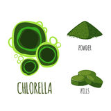Superfood chlorella set in flat style. Royalty Free Stock Images