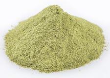 Superfood de poudre de Moringa - moringa oleifera Images stock